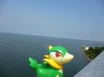 zabawka na tle morza